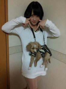 川栄李奈,経歴,犬好き