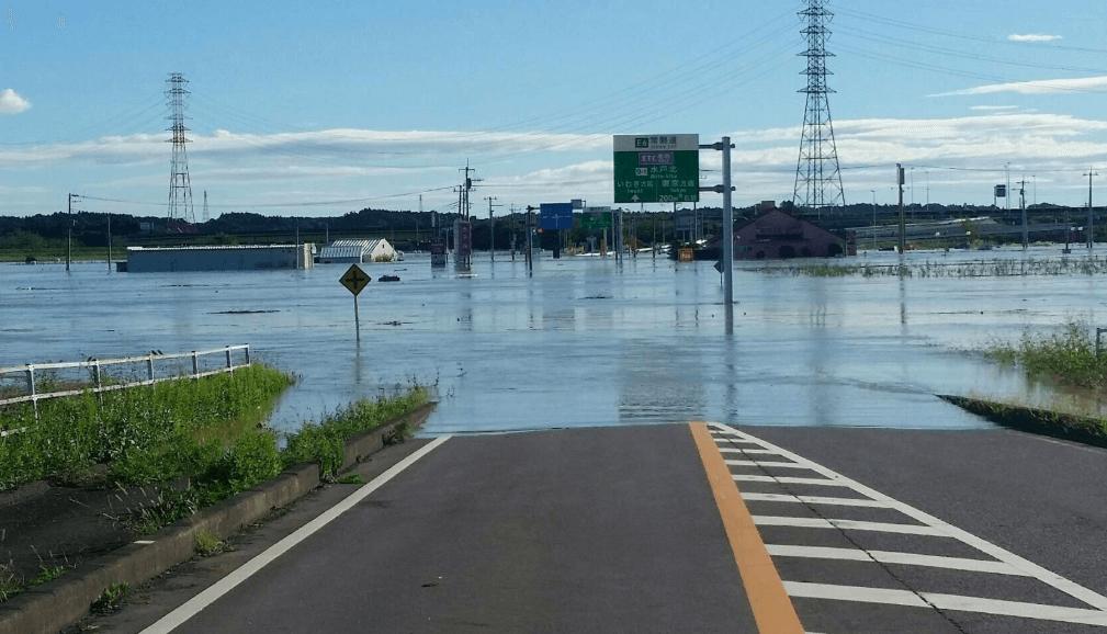 茨城県水戸市の那珂川氾濫で浸水!牛が流れてきた